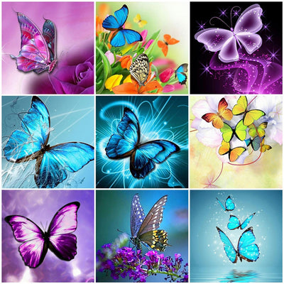 Butterfly Art Sets