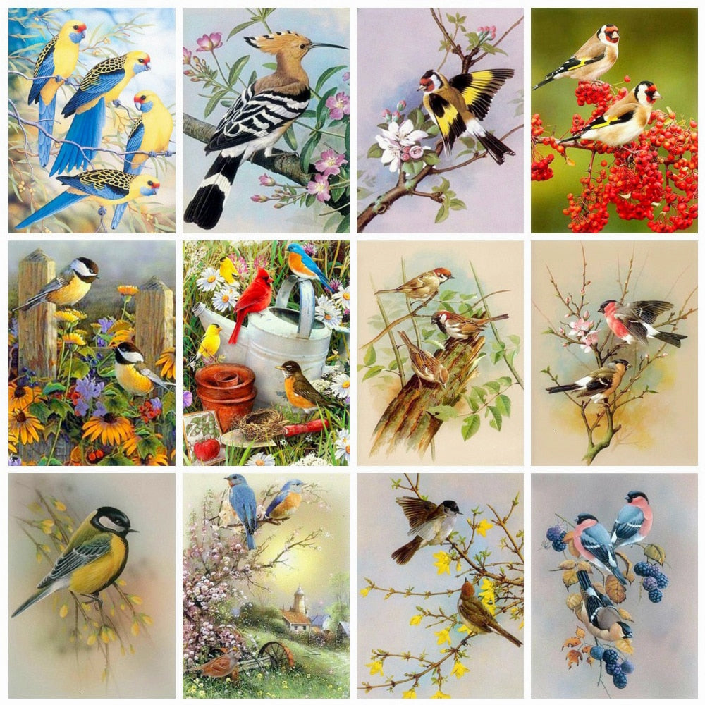 Sitting Birds Collage