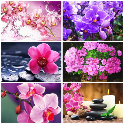 Purple Flowers Scenery
