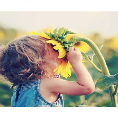 Girl Kisses Sunflower