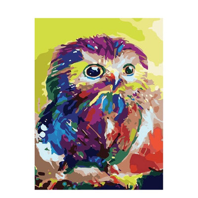 Color Owl