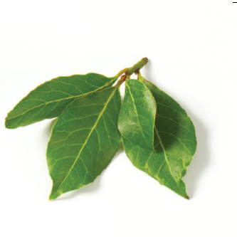 Bay Leaves 10gm