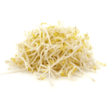 Bean Sprout Pack 250g
