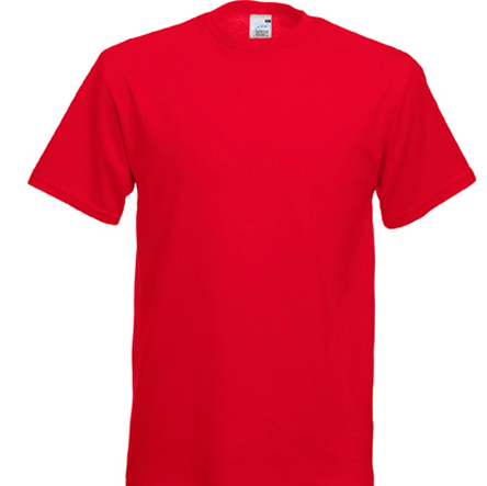 St Gabriels Catholic Primary School P.E. Top with LOGO