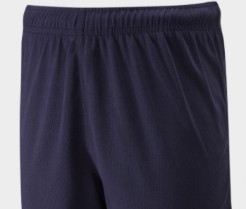 St Michaels C of E  Primary School Howe Bridge Micro Mesh P.E. Shorts