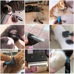 Load image into Gallery viewer, MasterG Shop Comb Pet Brush - Pet