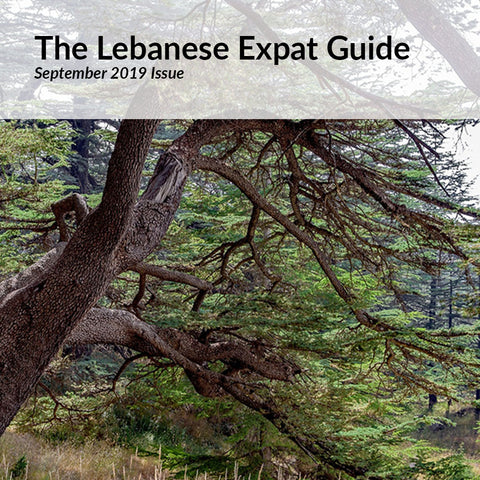 The Lebanese Expat Guide