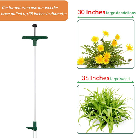 Tool Portable, Long Handled Lightweight, Long Handle Garden Weeding Tool with 3 Claws