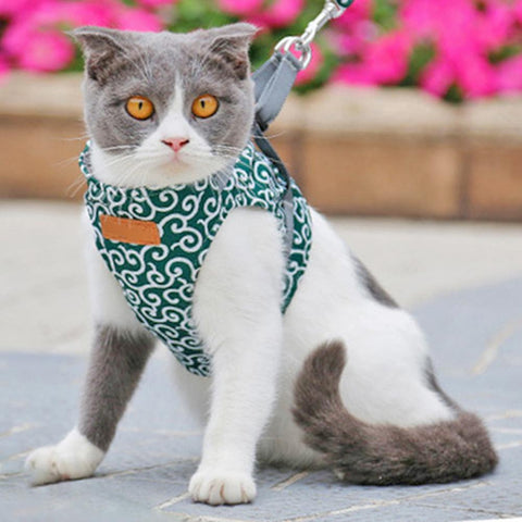 Image of Cat Chest Strap Leash, Style Clothes, Adjustable, Soft Padded Vest for Kittens