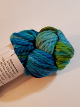 Load image into Gallery viewer, Bulky Weight Superfine Superwash Merino Yarn - Aurora Borealis
