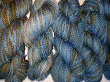 Load image into Gallery viewer, Bulky Weight Superfine Superwash Merino Yarn - Woods Edge