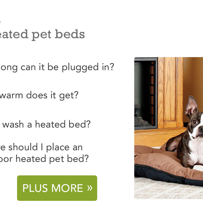 Common Questions About Heated Pet Beds