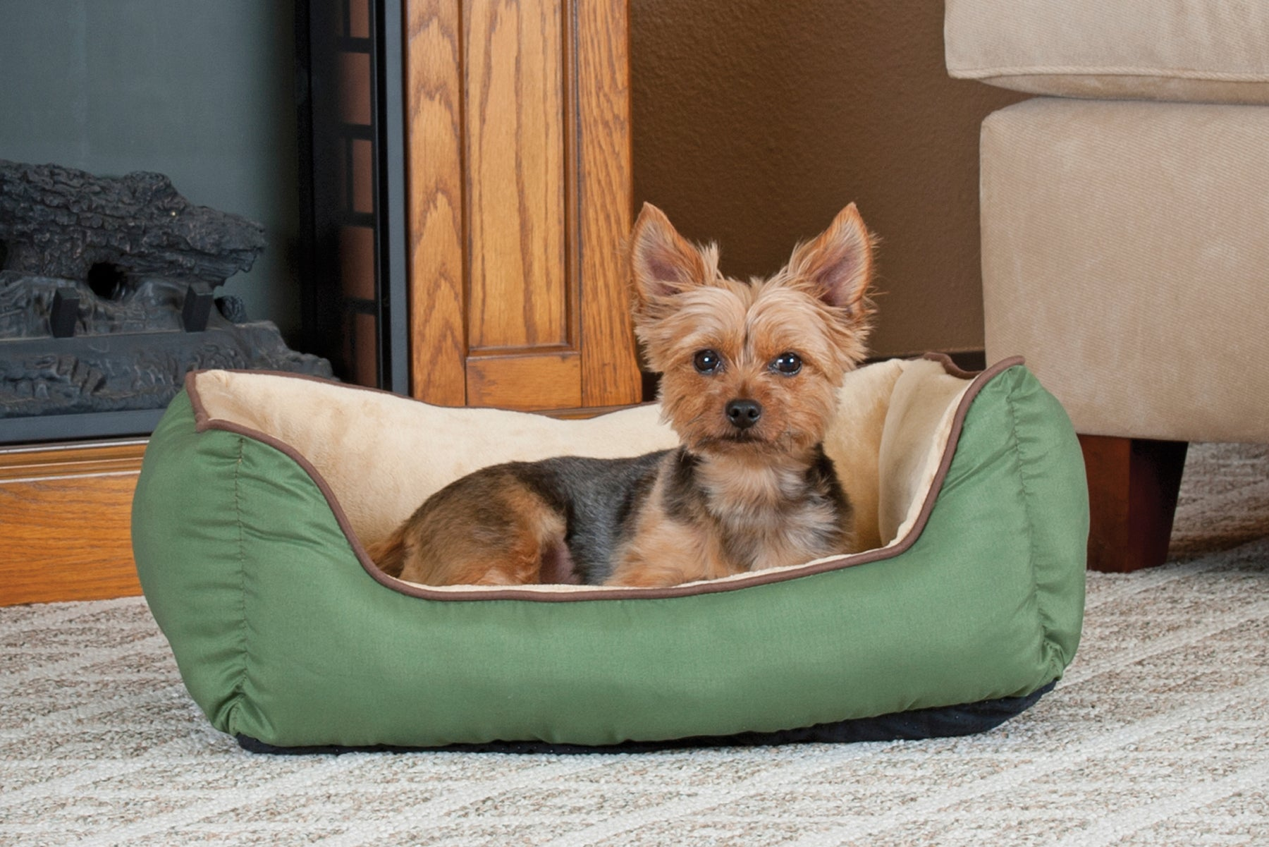 Dogs usually scratch their beds out of instinct.
