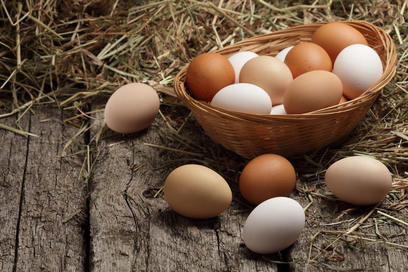 Four factors influence a hen's egg-laying abilities.