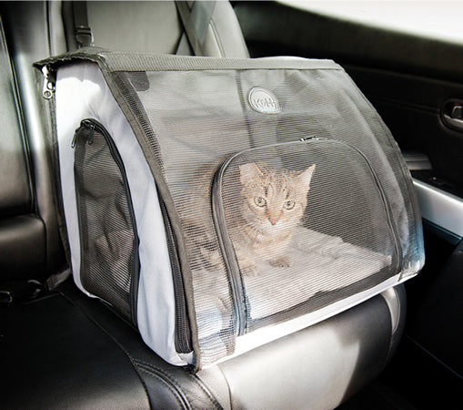 Keep your cat safe and secure in a carrier that buckles into the car while you're driving.