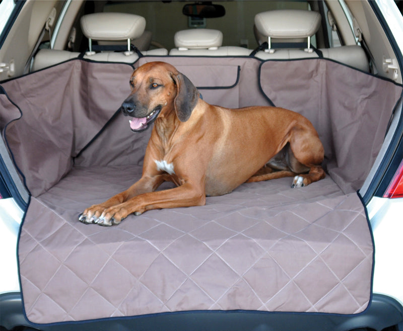 If you brush your dog regularly, less hair will fall onto your car's carpet.