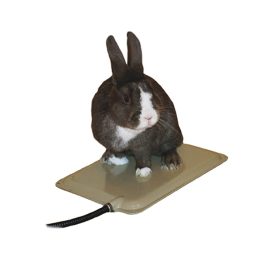 Small Animal Heated Pad Warmer