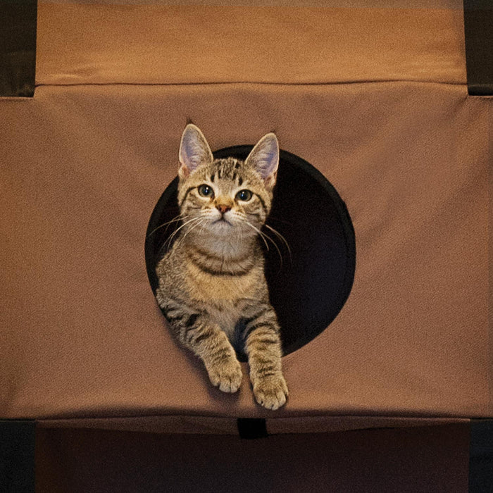 Hangin' Feline Funhouse Cat Tree Playhouse