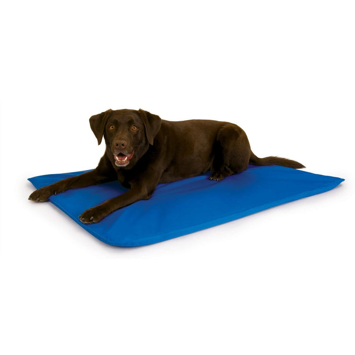 Cool Bed III Cooling Dog Bed Blue