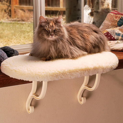 Kitty-Sill In Fleece Color