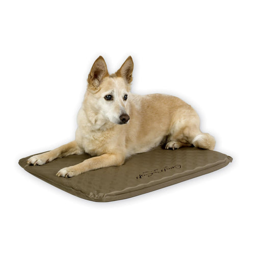 Lectro-Soft Outdoor Heated Bed Dog Bed