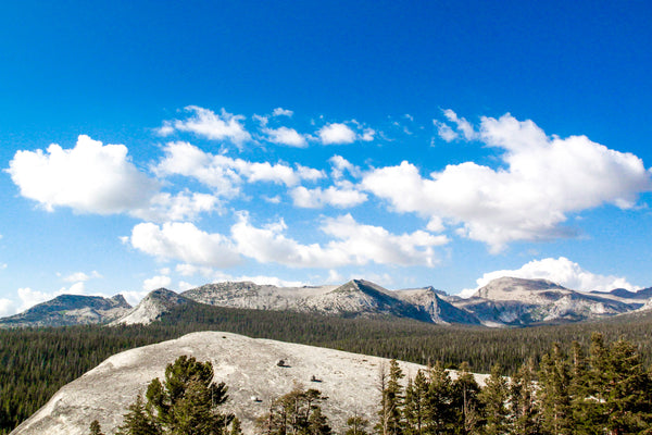 View of Tuolumne Meadows from Lembert Dome