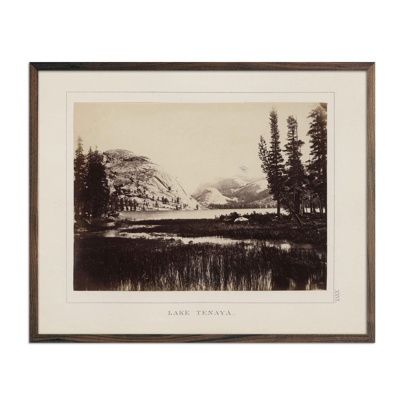 Photograph of Lake Tenaya