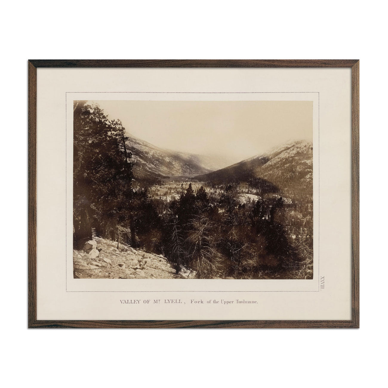 Photograph of Valley of Mt. Lyell
