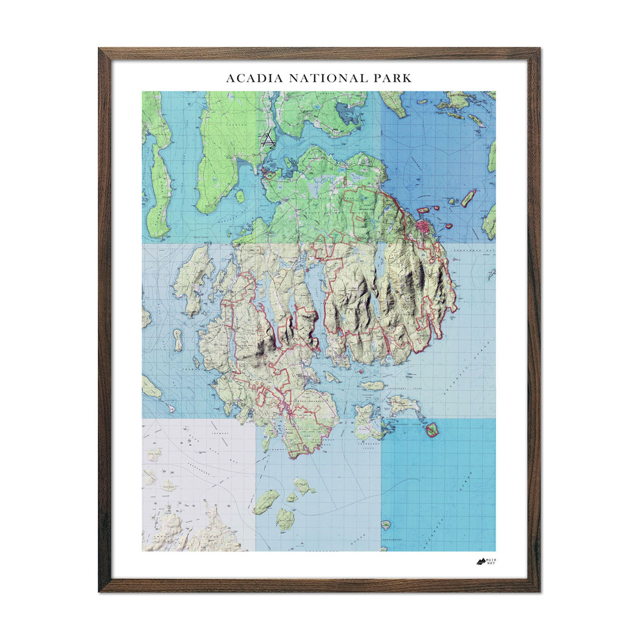 Idaho State Raised Relief Map Natural Color Relief Style
