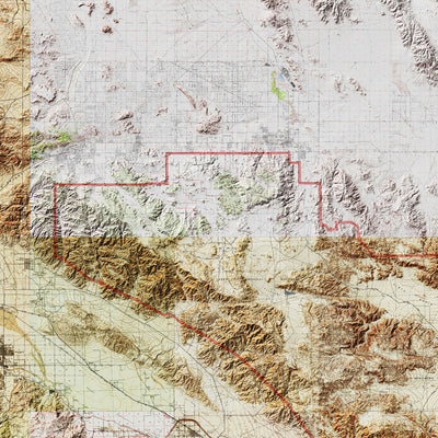 Joshua Tree Relief Map