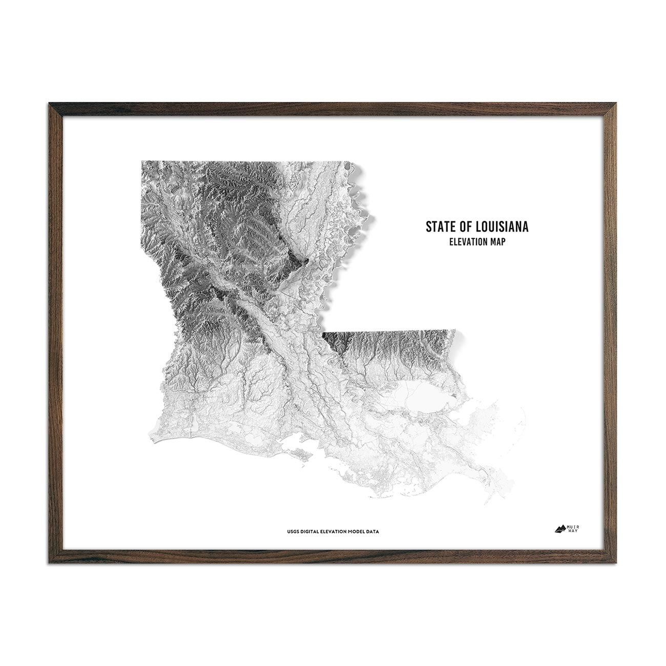 Louisiana Elevation Map