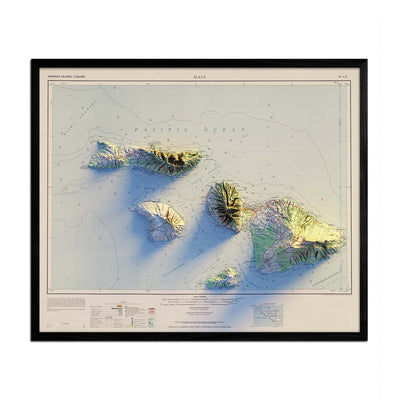 Maui 1961 Relief Map