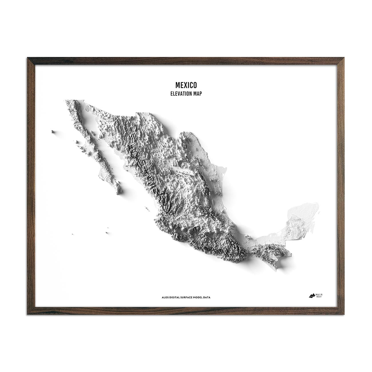 Mexico Elevation Map