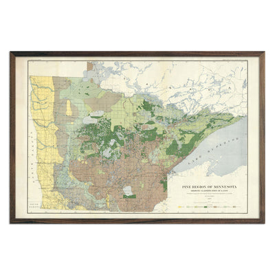 Pine Region of Minnesota 1899 Map