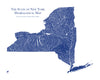 New York Hydrological Map