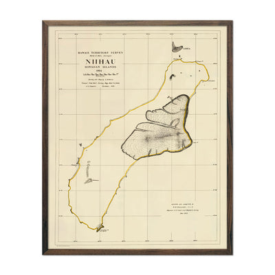 Vintage Map of Niihau from 1904