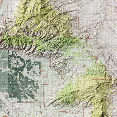 Saguaro Relief Map