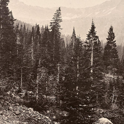 View Near Mount Blackmore, Yellowstone 1873