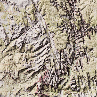 Zion Relief Map