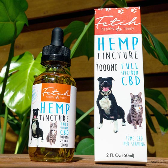 Extract Labs 1,000mg CBD for Pets
