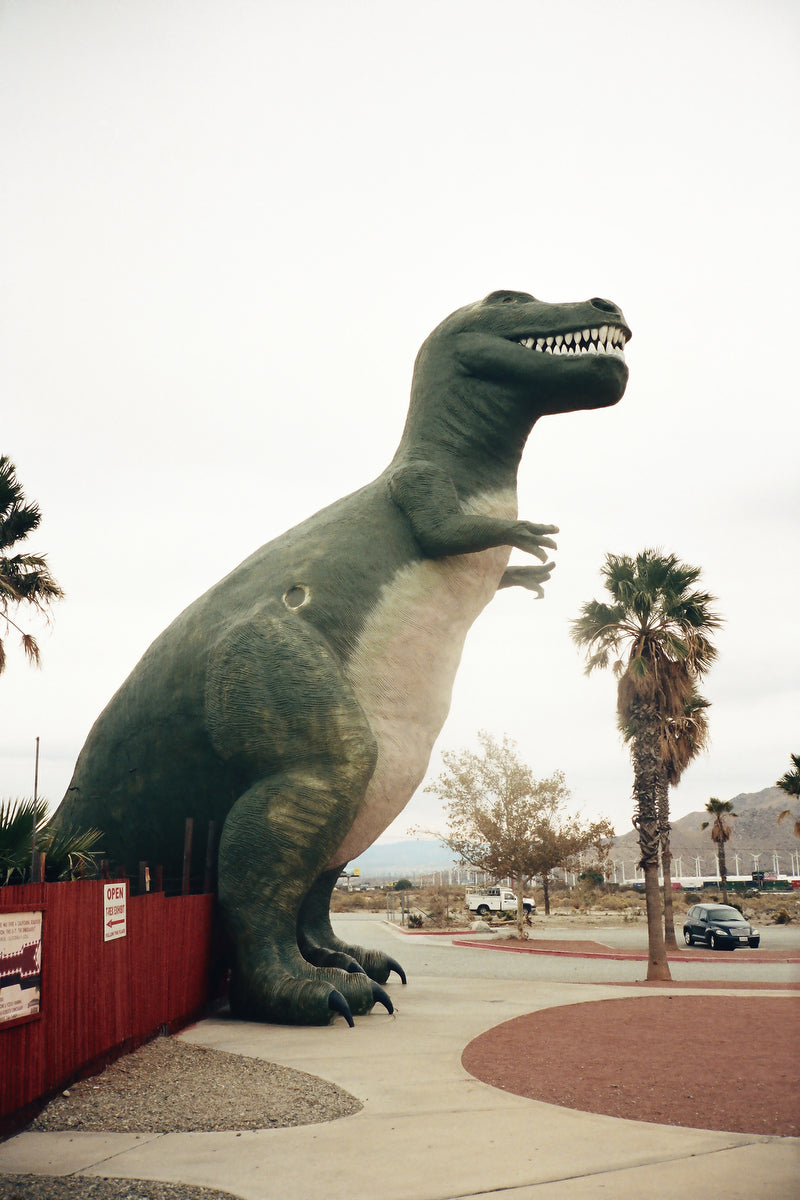 Poster T-rex on a parking lot in USA