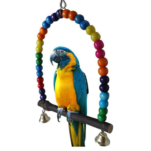 Wood Parrot Pirch