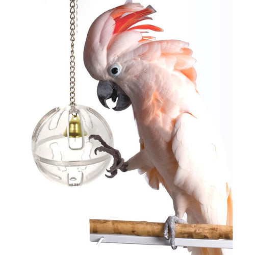 Parrot Bell Toy