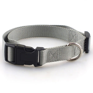 Sturdy Basic Nylon Dog Collar with Quick Snap Buckle