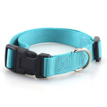 Load image into Gallery viewer, Sturdy Basic Nylon Dog Collar with Quick Snap Buckle