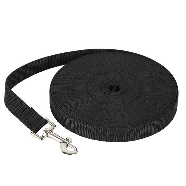 Sturdy Basic Nylon Dog Lead Leash
