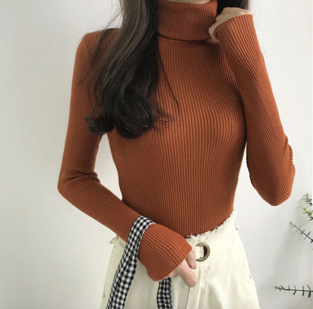 Thick Autumn Turtle Neck