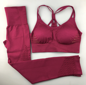 Cropped Gym Set