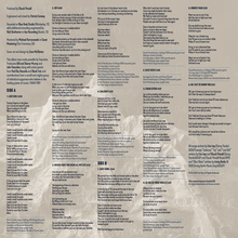 Load image into Gallery viewer, Solace in the Wild vinyl insert with lyrics and credits