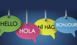 Strategies for a Bilingual Classroom